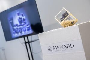 Menard-0001